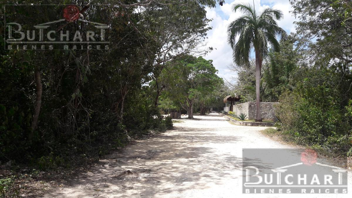 Lote de Terreno en Venta Oportunidad Vendo Terreno Col. Doctores En Cancun , Doctores Ii, Cancún